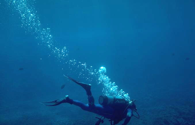 deeperstudy diver